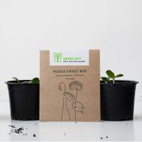 Környezetbarát nőnapi reklámajándék